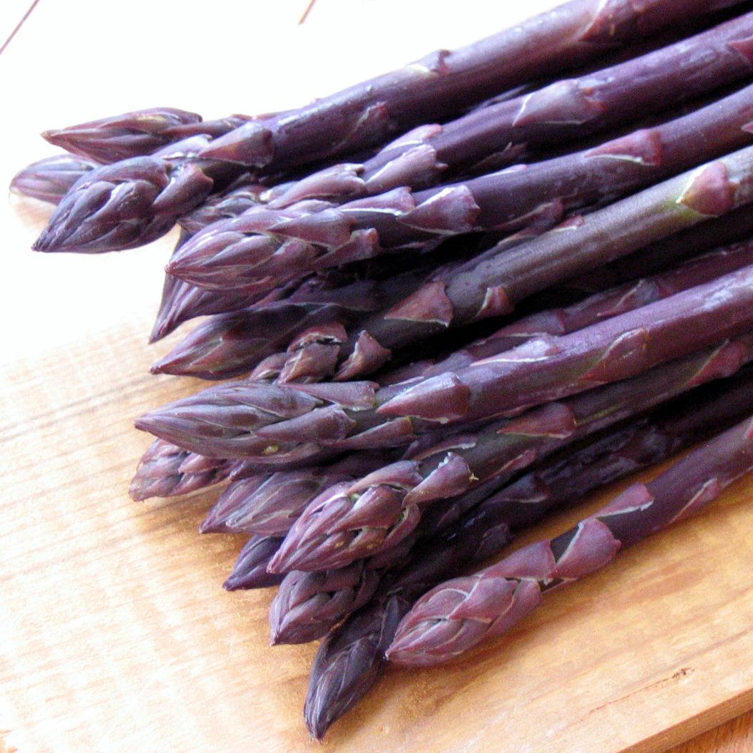 asparagus plant care instructions